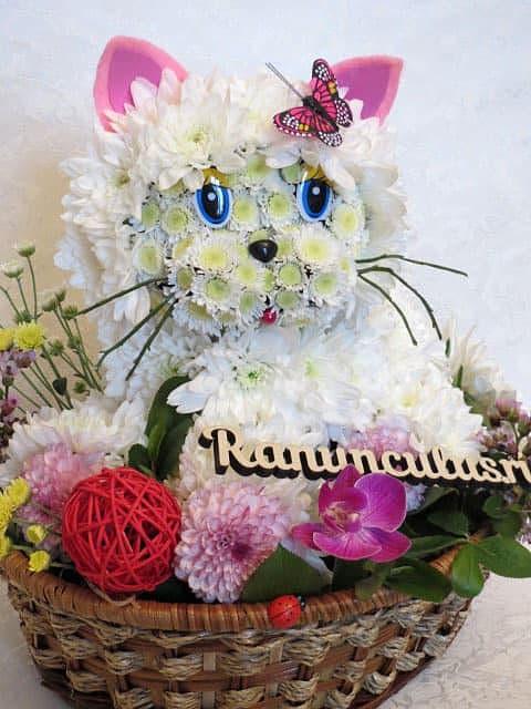 Кошки из цветов