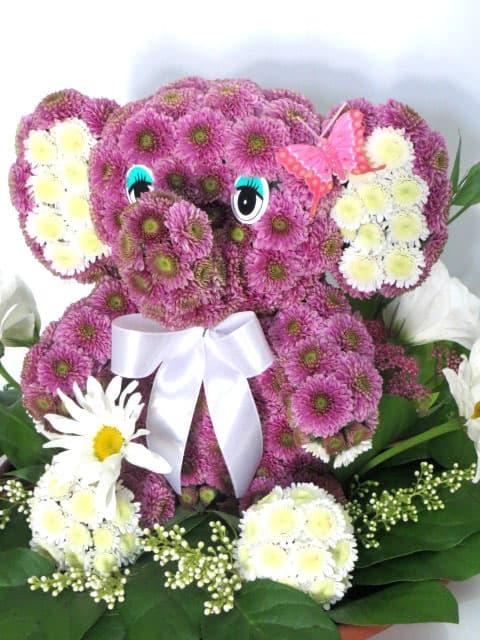 Букеты иваново, слон из цветов заказать